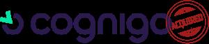 Cognigo